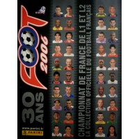 ALBUM PANINI FOOTBALL 2006 en images COMPLET en TBE