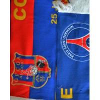 Echarpe GFCA AJACCIO-PARIS SG 16ème finale coupe de FRANCE 09