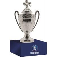 Coffret Coupe de France en 3D sur Socle en Bois (Version 150mm)