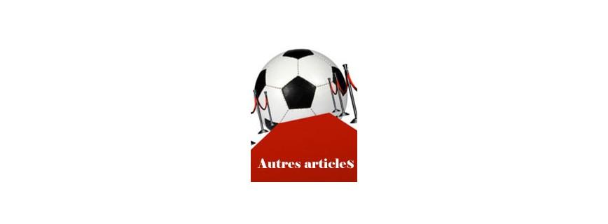 AUTRES ARTICLES